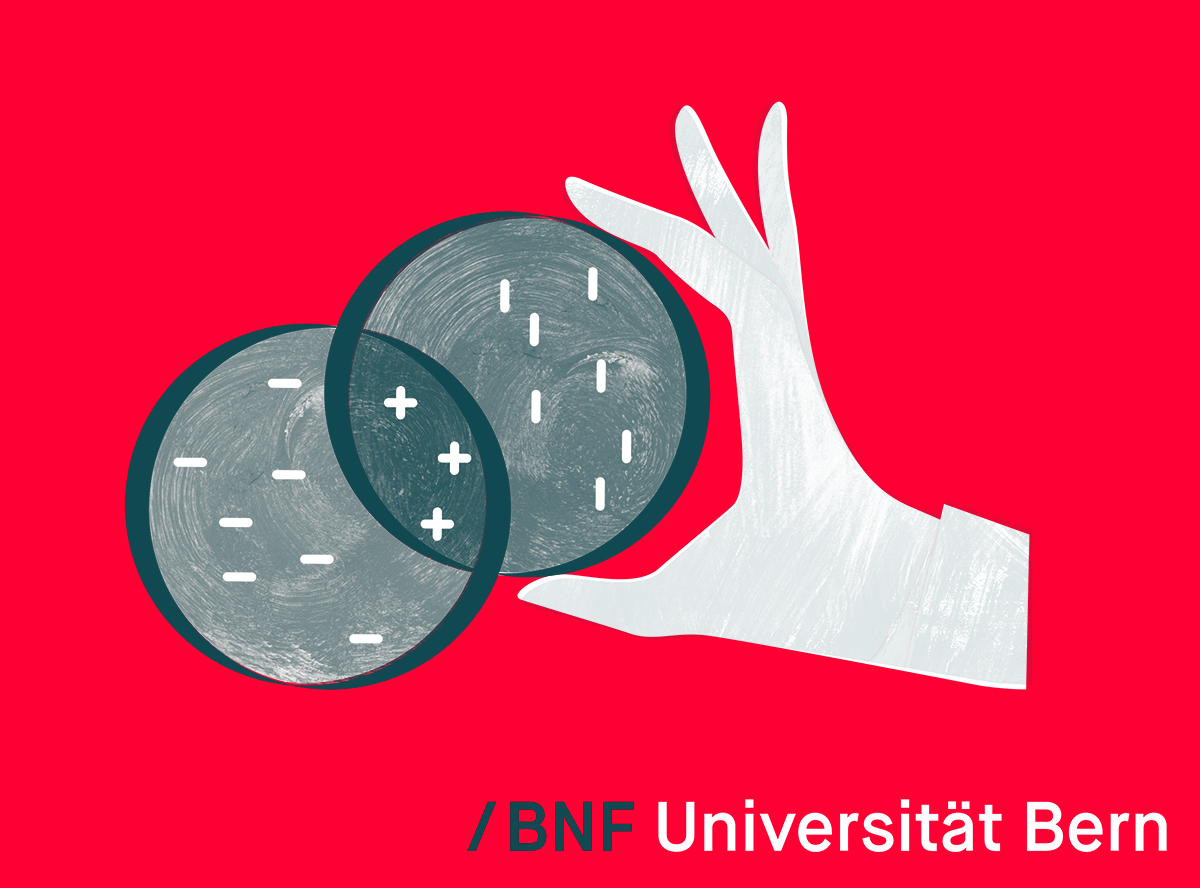Titleimage: BNF - National qualification programme